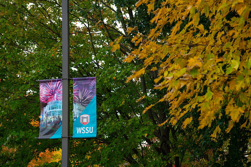 WSSU sign with tree with fall colors in background.